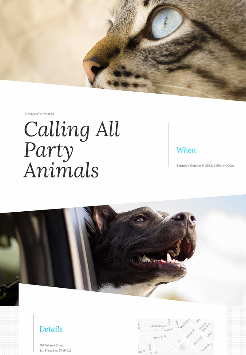 Seasonal - Pet Homecoming - Modern Invitation