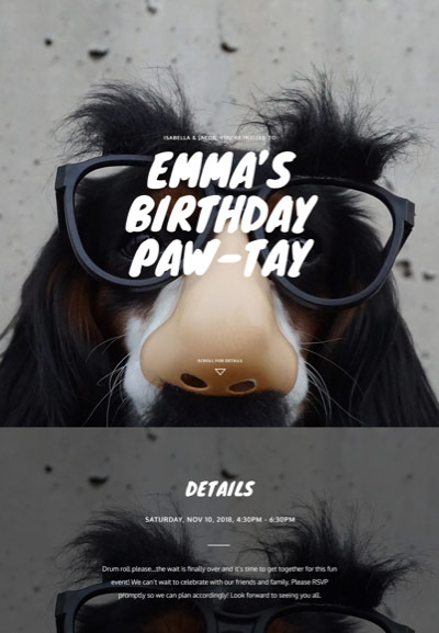 Pet Party - Pet Birthday - Immersive Invitation