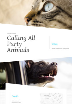 Pet Party - Pet Homecoming - Modern Invitation