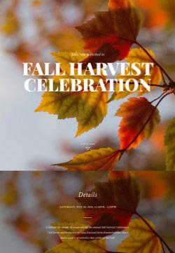 Seasonal - Autumn Gathering - Immersive Invitation